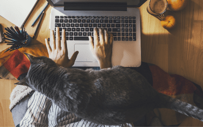 Remote working policy: 7 key elements